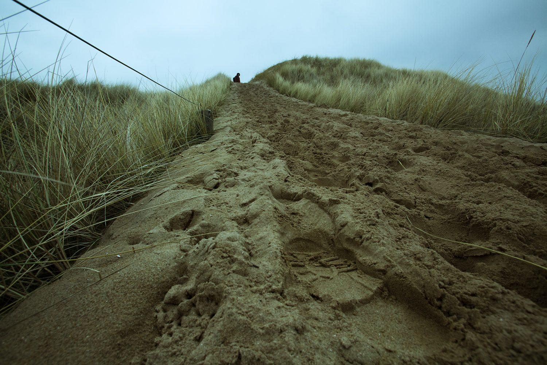 Aberlady, dunes, near Edinburgh