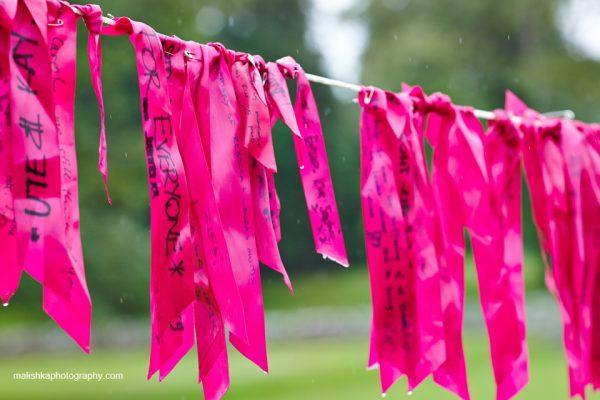 Scone Palace Pink Ribbonwalk in Perthshire