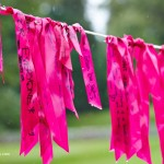 Scone Palace Pink Ribbonwalk 2014