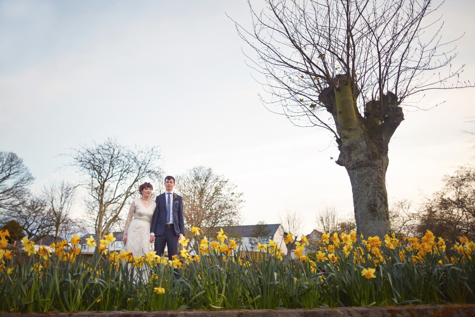 Bride and groom among daffodils in Scotland